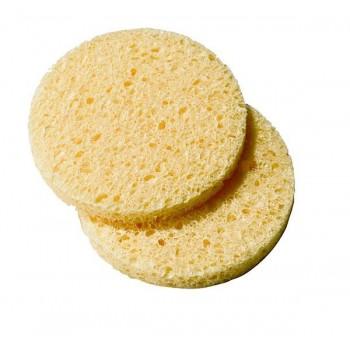 Esponja de celulosa x 25